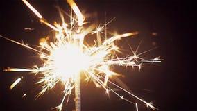 Bright Sparkler on black background. Holiday lights and fireworks. stock video
