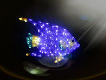 Bright sparkling blue fish in dark ocean under above  sun light Royalty Free Stock Photos