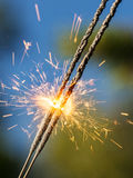 Bright sparks and nature Stock Image