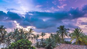 Colorful cloudy sunset with palms time lapse