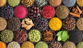 Colorful spice background, top view. Seasonings and herbs for In. Bright spice background, top view. Collection seasoning and herbs of Indian food royalty free stock photography
