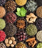 Bright spices and herbs in cups, top view. background for packi. Fresh spices and herbs for food. Colorful condiments as background, top view. lot seasonings in royalty free stock images