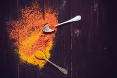 Bright spices Stock Photography