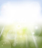 Bright spring background Stock Photos