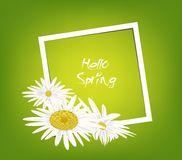 Bright spring banners design. Frame background.  Royalty Free Stock Image