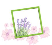 Bright spring banners design. Frame background.  Royalty Free Stock Photography