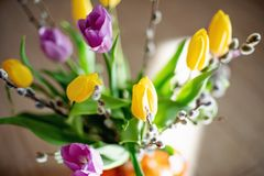 Free Bright Spring Bouquet Of Yellow And Purple Tulips And Branches Pussy Willows. Easter Arrangement Of Fresh Flowers Royalty Free Stock Image - 143899786