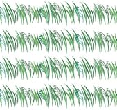 Bright spring graphic herbal floral pattern of green grass with oat horizontal seamless pattern watercolor hand illustration. Perfect for greeting cards Royalty Free Stock Images