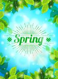 Bright Spring realistic background, blue sky, green leaves. Sunburst text, glare, glow. Template for web design. Vector Royalty Free Stock Images