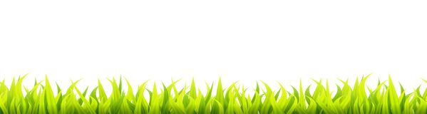 Bright springtime lawn banner. Seamless summer or spring grass decoration. Fresh greenery height stock illustration