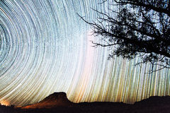 Bright star trails Royalty Free Stock Photo
