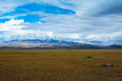 Bright steppe landscape with a piece of rock royalty free stock photo
