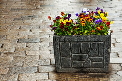 Bright stone flowerpot on pebble Royalty Free Stock Photo