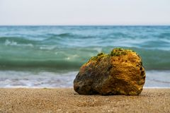 Bright stone on the seashore stock photo