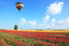 Bright striped balloon flies over a field Royalty Free Stock Photos