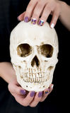 Bright stylish manicure with colorful nail gel polish, hands holds skull. Hands with purple manicure holding human skull Stock Photos