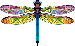 Bright stylized dragonfly. Stylized dragonfly bright colored colorful beautiful wings Royalty Free Stock Photo