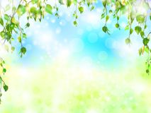 Bright summer Royalty Free Stock Images