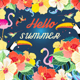 Bright summer background Royalty Free Stock Photos
