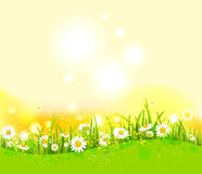 Bright summer background Stock Images