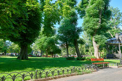 Bright summer city park at midday, sunlight, trees with shadows and green grass Royalty Free Stock Photography