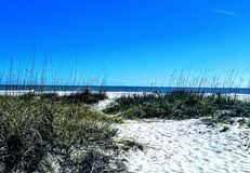 Beach. Bright summer day Royalty Free Stock Image
