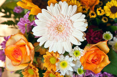 Bright Summer Flower Bouquet Royalty Free Stock Images