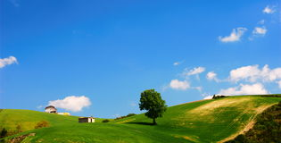Bright summer landscape. Typical summer landscape with green field and blue sky stock image