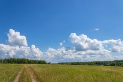 Bright summer landscape with blue sky. Country road through a field in the countryside. Moscow region, Russia. Bright summer landscape with blue sky. Country royalty free stock images
