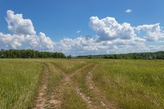 Bright summer landscape with blue sky. Country road through a field in the countryside. Moscow region, Russia. Bright summer landscape with blue sky. Country royalty free stock photos