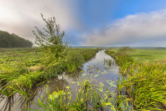 Bright summer landscape river landscape. Bright summer landscape of a lowland river valley with mist opening to low clouds and strong headwind near Eelde Royalty Free Stock Photo