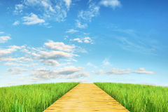Bright summer landscape with wooden road going into distance Stock Image