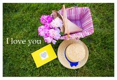 Bright summer picnic Stock Photos