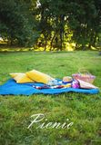 Bright summer picnic Royalty Free Stock Photography
