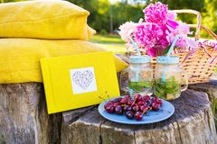Bright summer picnic. Picnic on the grass. Cherry, bouquet of flowers, fruit, book drinks Stock Photo