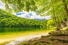Bright summer scene of Hintersee lake. Picturesque morning view of Bavarian Alps on the Austrian border, Germany, Europe. stock photography