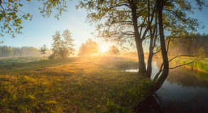 Bright summer sunrise Royalty Free Stock Photography