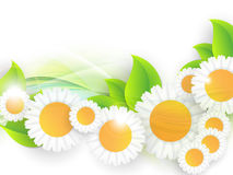 Bright summer vector background Royalty Free Stock Images