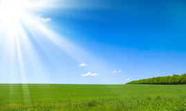 Bright summers day Stock Image