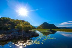 The bright sun above the Skadar Lake, overgrown with water lilie Stock Photo