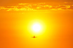 Bright sun Royalty Free Stock Images