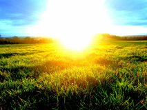Bright sun. An amazing picture of the sun Royalty Free Stock Photography