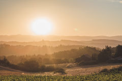 Bright sun over rolling hills in Newberg, Oregon stock photos