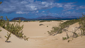 Bright sun on  sand banks in Corralejo, Fuerteventura, Canary-is Stock Image
