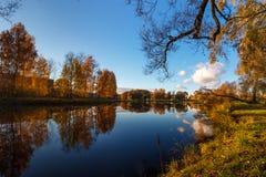 Bright, sunny autumn with golden birch trees near the city lak stock photos