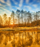 Bright sunny autumn morning on the river. Royalty Free Stock Photos