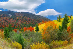 Bright sunny autumn in the mountains Royalty Free Stock Photos