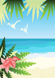 Bright sunny beach Royalty Free Stock Photos