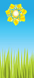Bright sunny day. Vector illustration Royalty Free Stock Image
