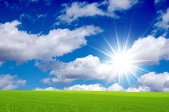 Bright sunny day. Bright sunny day and green field. Panorama stock photography